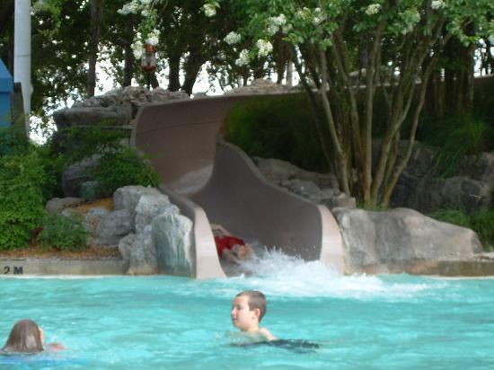 Top 5 Resort Pools at Walt Disney World (6/6)