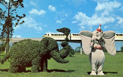 Dumbo #3