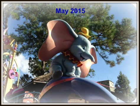 May 2015 Wordless Wednesday